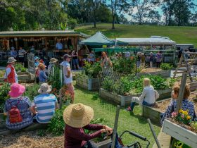 Botanical Bazaar Gold Coast Garden Festival