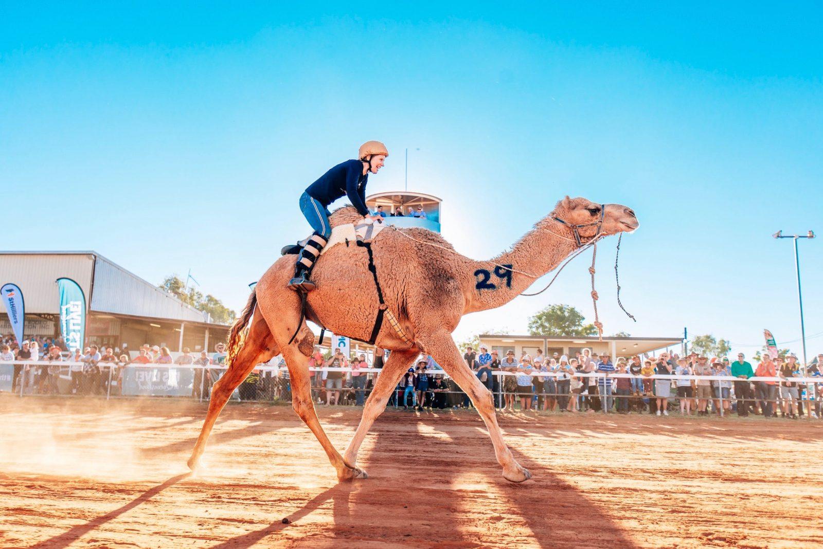 Finishing Line at Boulia Camel Races