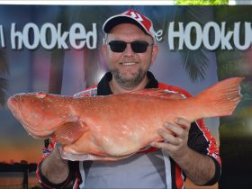Boyne Tannum Hook Up - Coral Trout