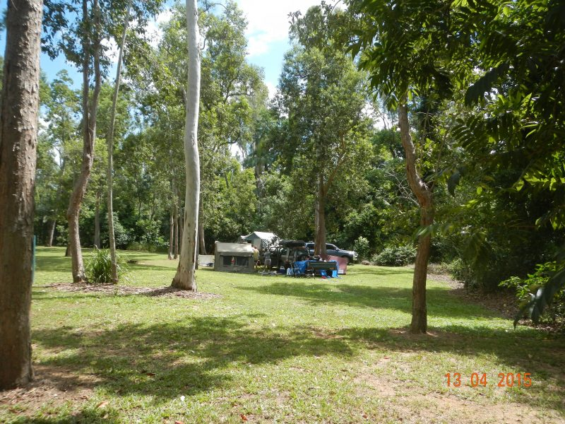 A campsite sits in an open grassy space shaded by tall trees.