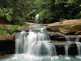 Buderim Falls Sunshine Coast