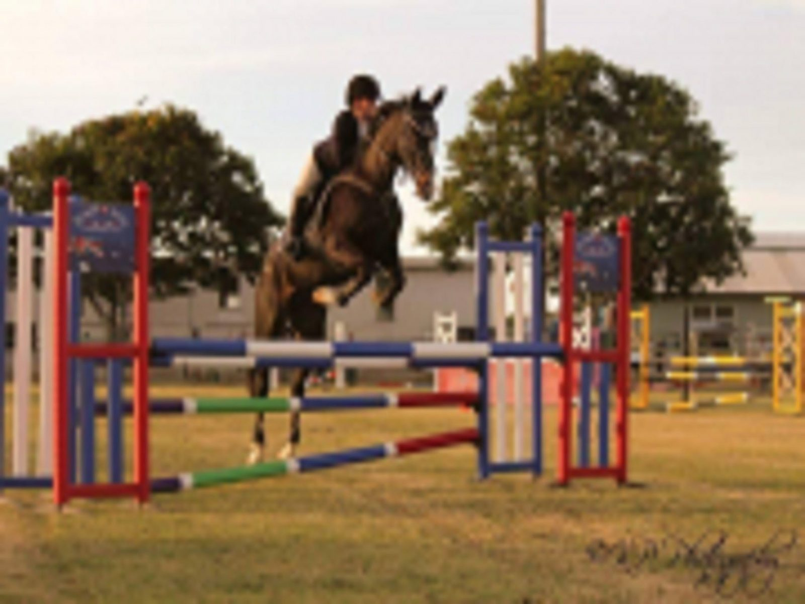 Hughenden Hack & pony Club