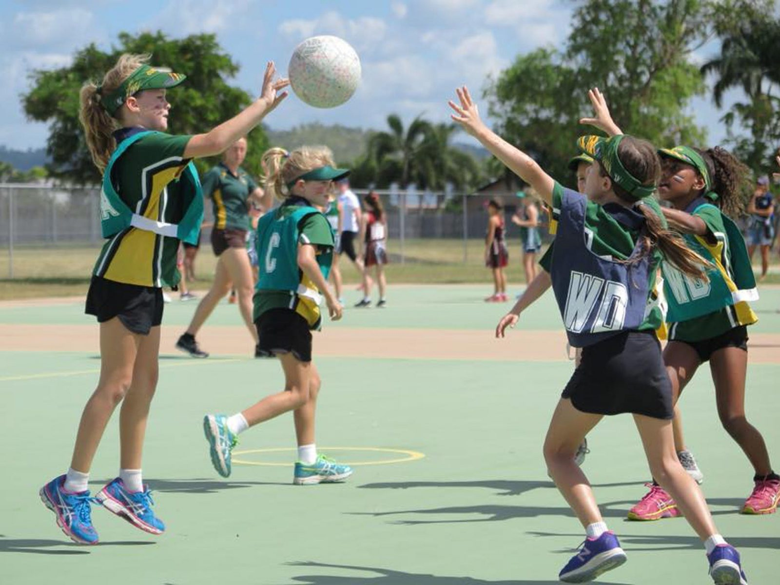 Netball Carnival