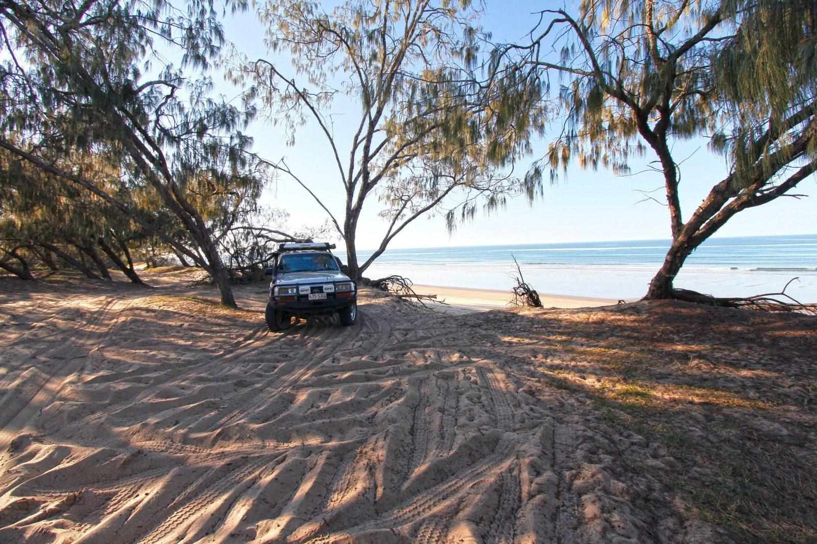 Car parked under shade of coastal trees at back of sandy beach.
