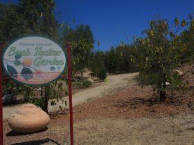 ATDW_Landscape__AQ21_Bush_Tucker_Garden.JPG