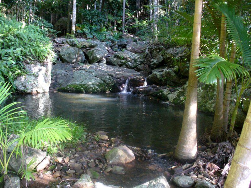 Swimming holes in Nob Creek