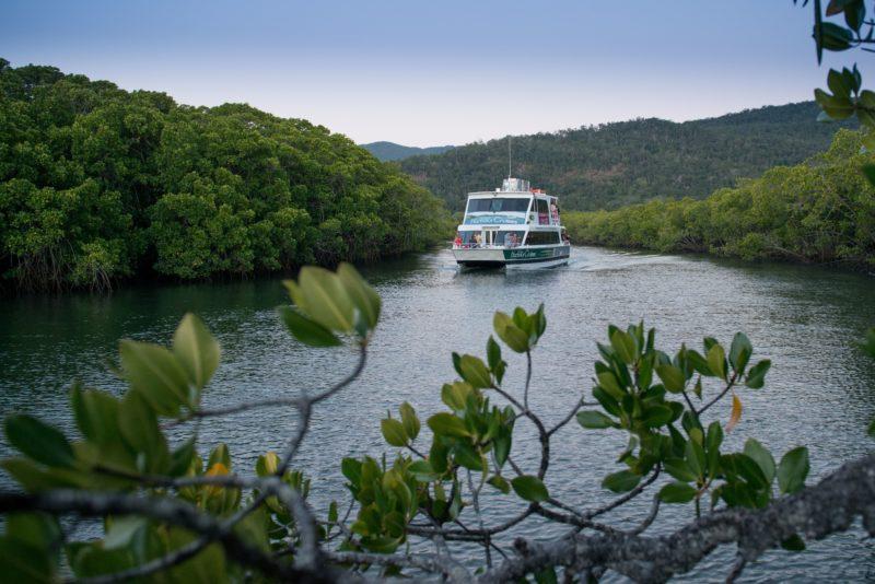 Crocodile Cruise Cairns