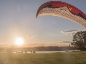 paragliding at the turf farm in Canungra