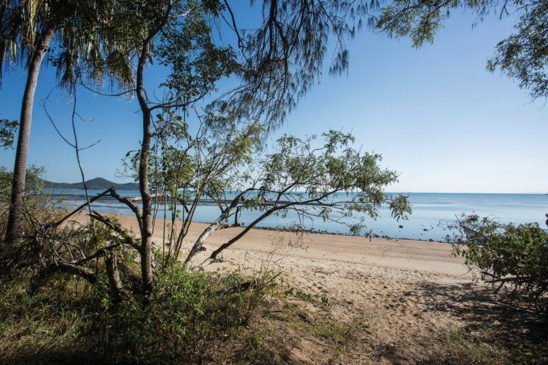 Beachside camping area