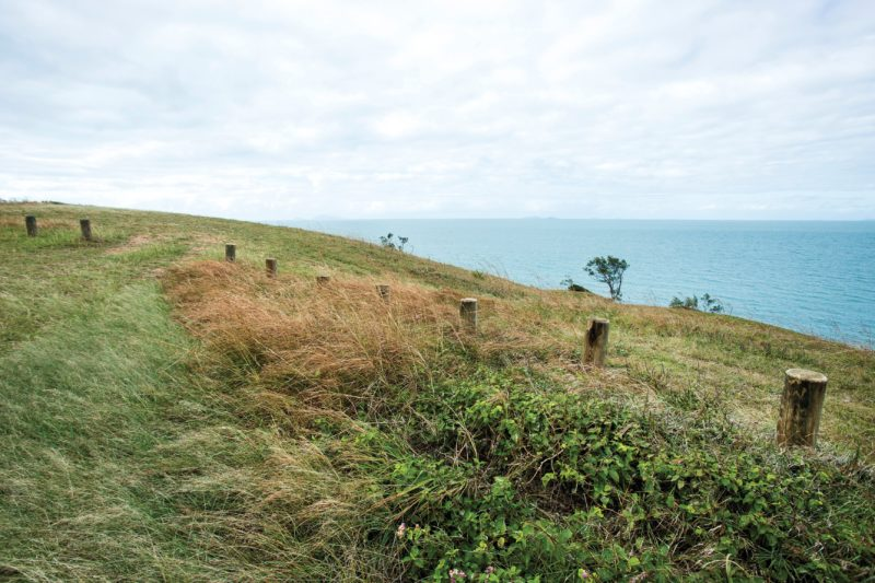 Grassy lookout over ocea at Cape Palmerston.