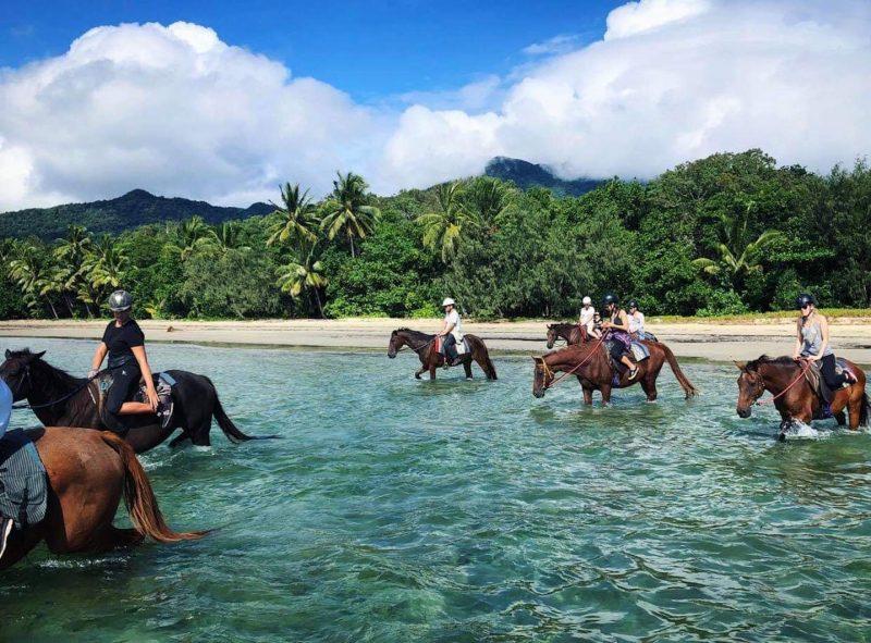 Cape Trib Horse Rides Beach Horse Rides Tour.