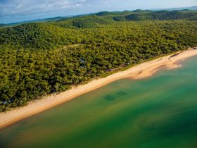 Aerial of Cape York Camping Punsand Bay