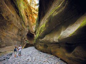 HIkers near sandstone walls in Carnarvon Gorge