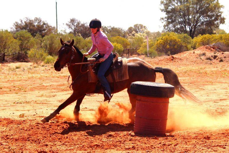 Horse Gymkhana