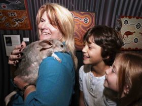National Bilby Day Festival and Fur Ball