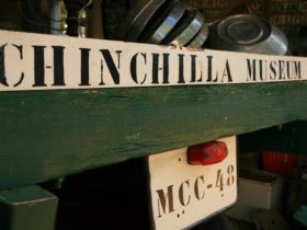 Chinchilla Museum