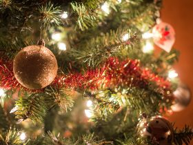 Enjoy a traditional Christmas Dinner at Granite Belt Brewery