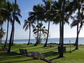 Blue Pacific Beachfront
