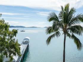 The iconic Jetty at the hotel is set out on the water and has views out to the Whitsunday Islands