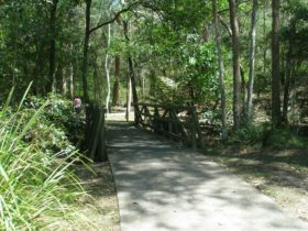 Cornubia Forest Park