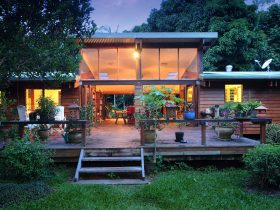set in tropical rainforest and garden