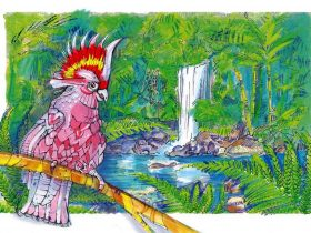 Creative Drawing of Cockatoo by Curtis Falls