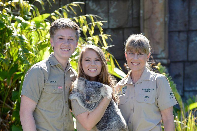Cuddle a Koala