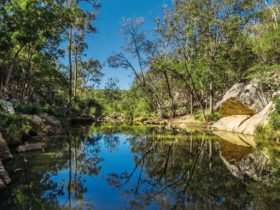 Picturesque waterway in Crows Nest National Park