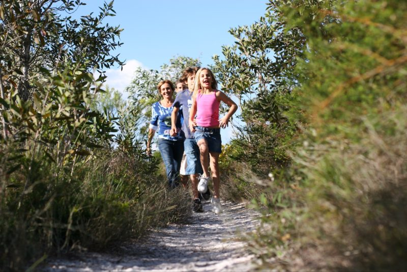 Walkers on track amid heath in Currimundi Lake Conservation Park