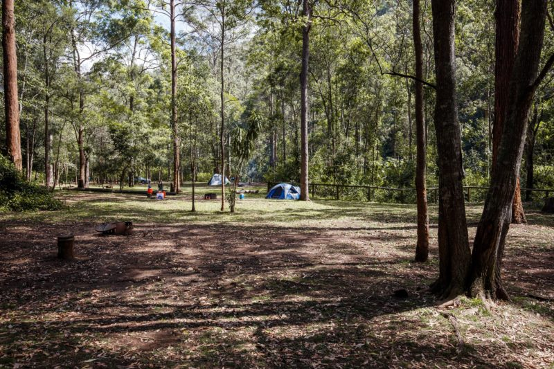Camping area surrounded by forest, Mount Mee.