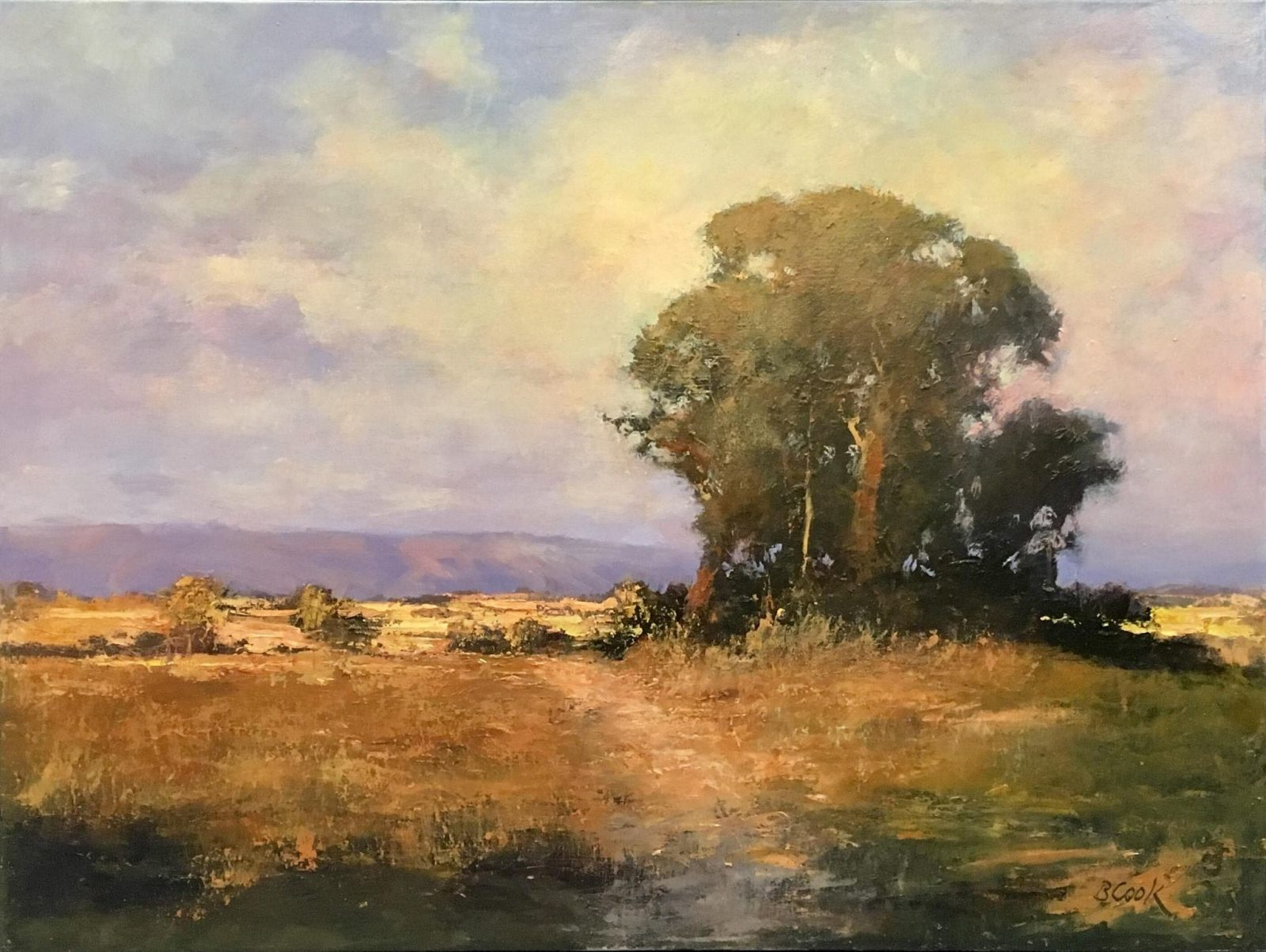 Brian Cook, Mt. Cotton, oil on canvas, 2017 winner
