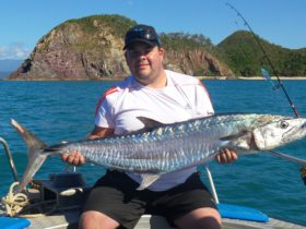 Daintree River Fishing and Photography Tours