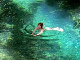swimming spot in daintree
