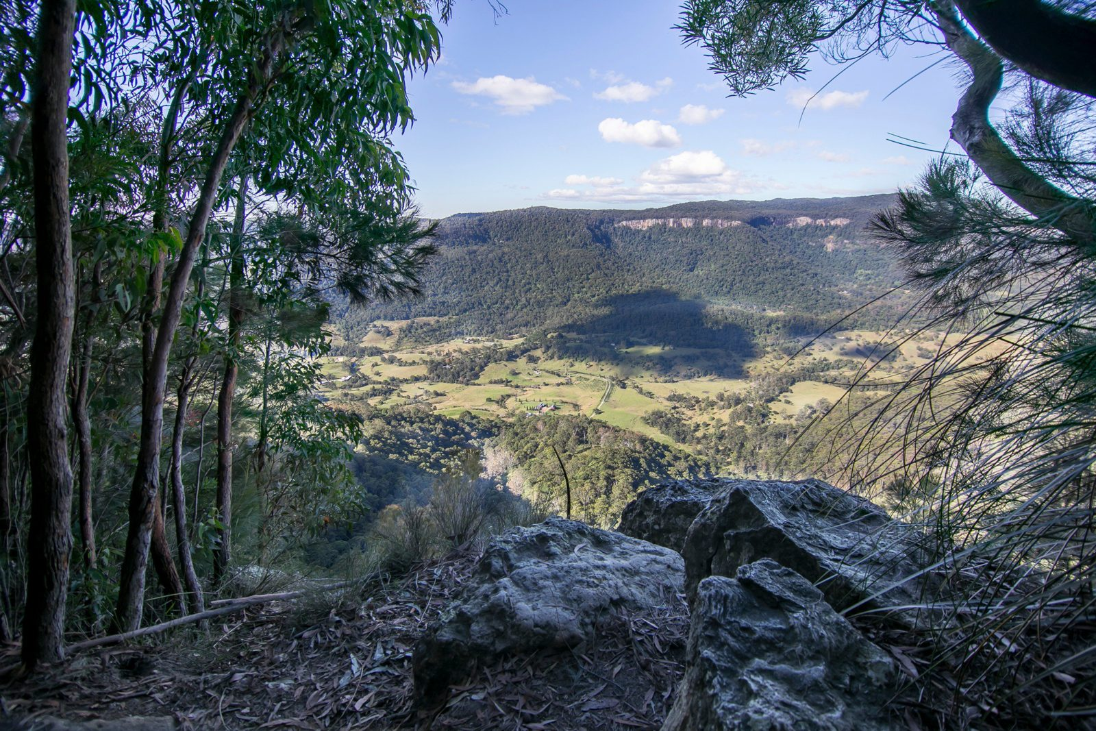 Enjoy magnificent views from the Numinbah lookout.