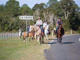 dayboro_1_moreton_bay_region