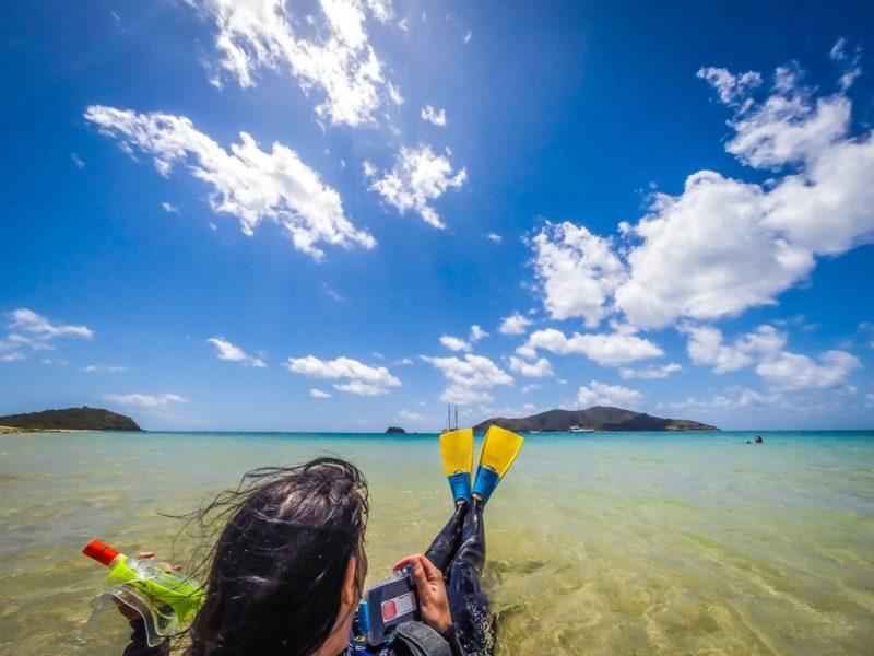 Snorkel pristine reefs with Derwent Hunter day trips