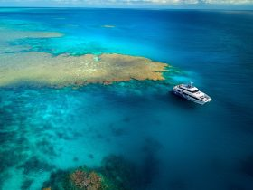 Drone shot of AquaQuest at one of their 27 reef sites