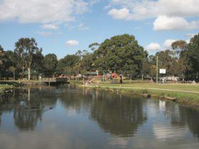 Doug Larsen Park