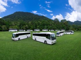 Down Under Tours coach fleet