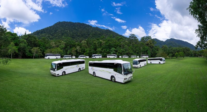 Down Under Tours coach fleet