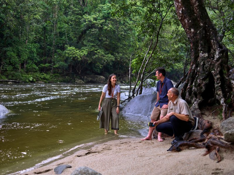 Driver Guide with interacting with passengers on shore of Mossman Gorge River.