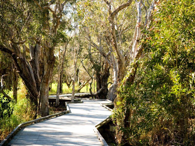 Visit Logan Queensland