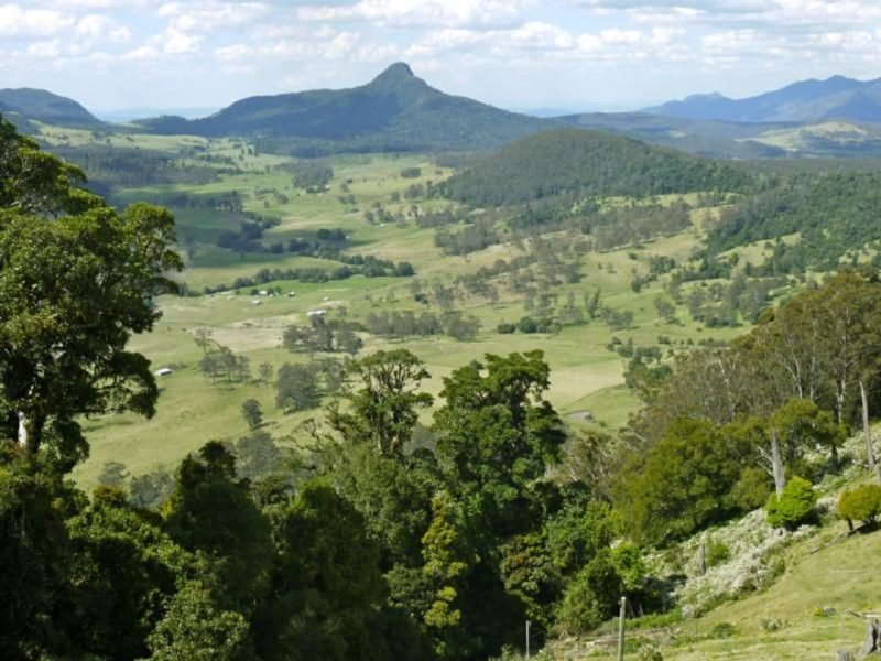 ECO Safaris Queensland