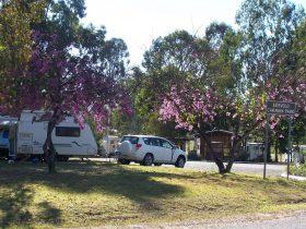 Eidsvold Caravan Park