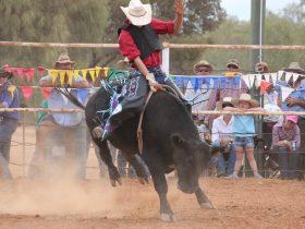 Eromanga Rodeo