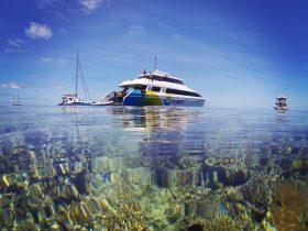 Explore Hamilton Island