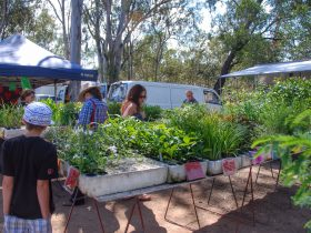 Fernvale Country Markets