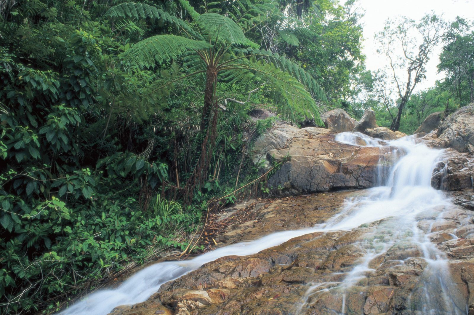 Finch Hatton Gorge Waterfall