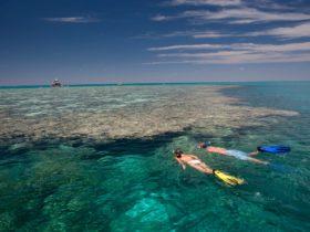 Fitzroy Reef Lagoon