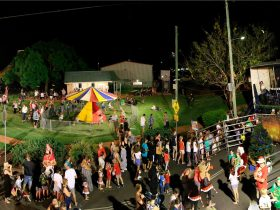 Forest Hill Christmas Carnival